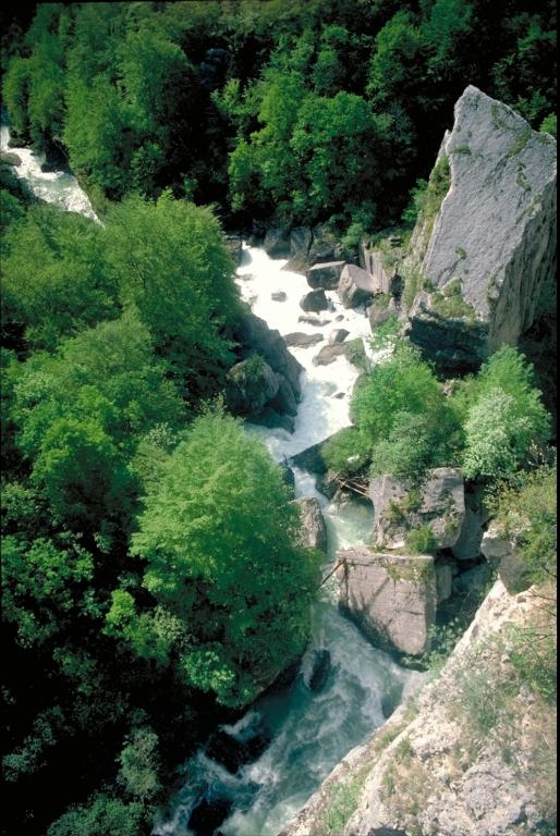 Pont_des_pierres.jpg