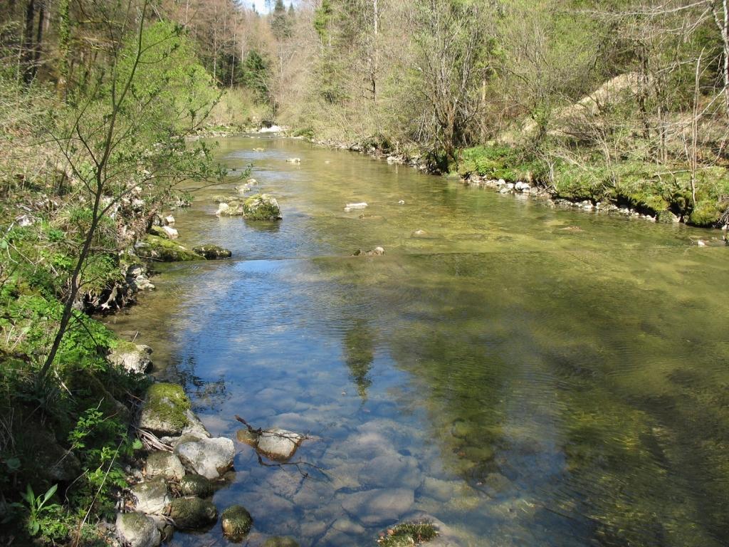 rivieres.jpg