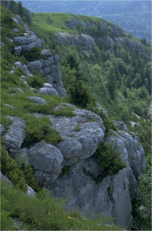falaises.jpg