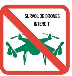 pictos_drone.jpg