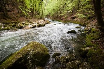 Présentation du bassin versant de la Valserine